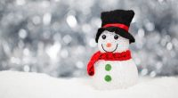 Parents are invited to the Stoney Creek Community School Winter Concert on December 13, 2018. Afternoon show starts @ 1:30 pm Evening Show starts @ 6:30 pm For more information […]
