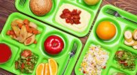 School Meal Program The Burnaby School District provides a hot lunch program at Stoney Creek Cycle # Cycle Dates Purchase Dates Menu #1 #2 #3 Sept 8th – Oct 1st […]